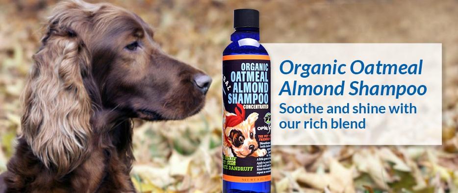 Organic Oatmeal & Almond Shampoo